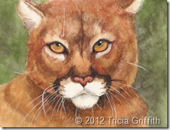 Cougar - Tricia Griffith
