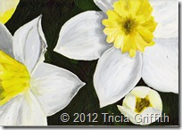 Daffodils - Tricia Griffith