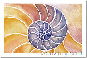 Nautilus - Tricia Griffith