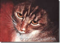 Reflective Kitty - Tricia Griffith