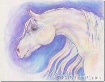 Aurora Equus - Tricia Griffith