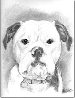 Bagel Portrait