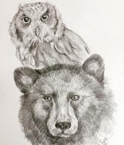 Screech Owl & Black Bear